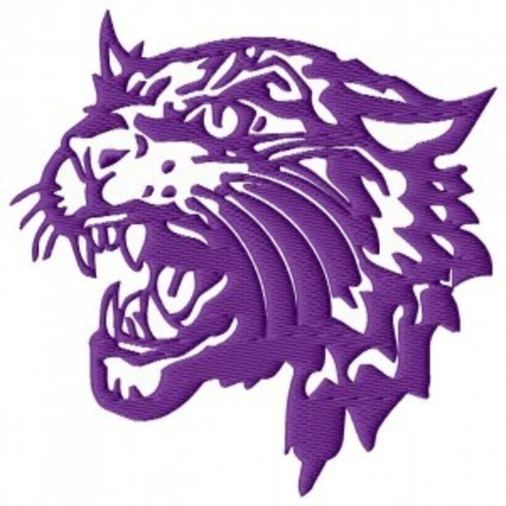 Bethel University mascot