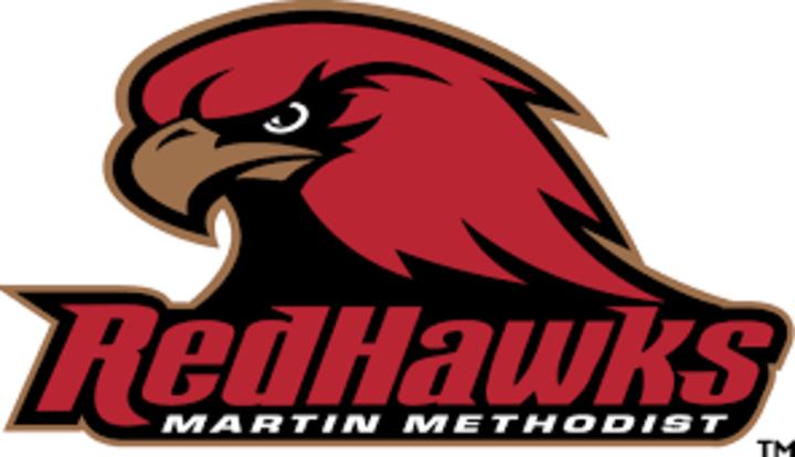 Martin Methodist College mascot