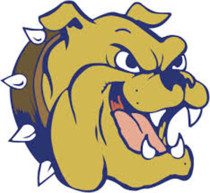 Tennessee Wesleyan College mascot