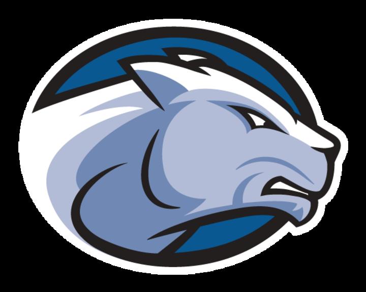 Wheaton (Mass.) College mascot