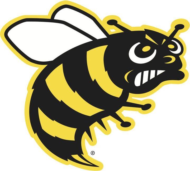 Savannah College of Art & Design mascot