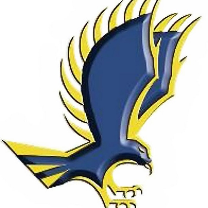 Roger Williams University mascot