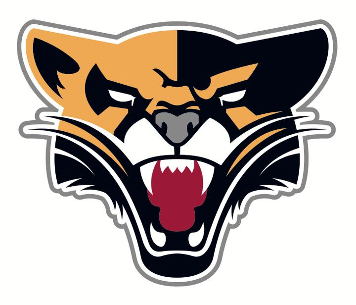 St. Xavier University mascot