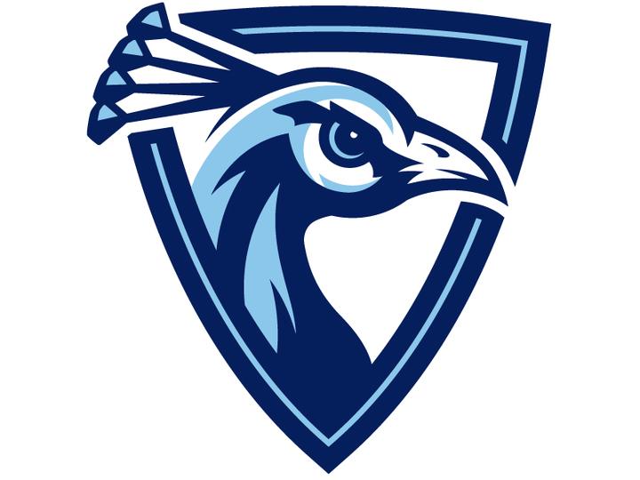 Upper Iowa University mascot