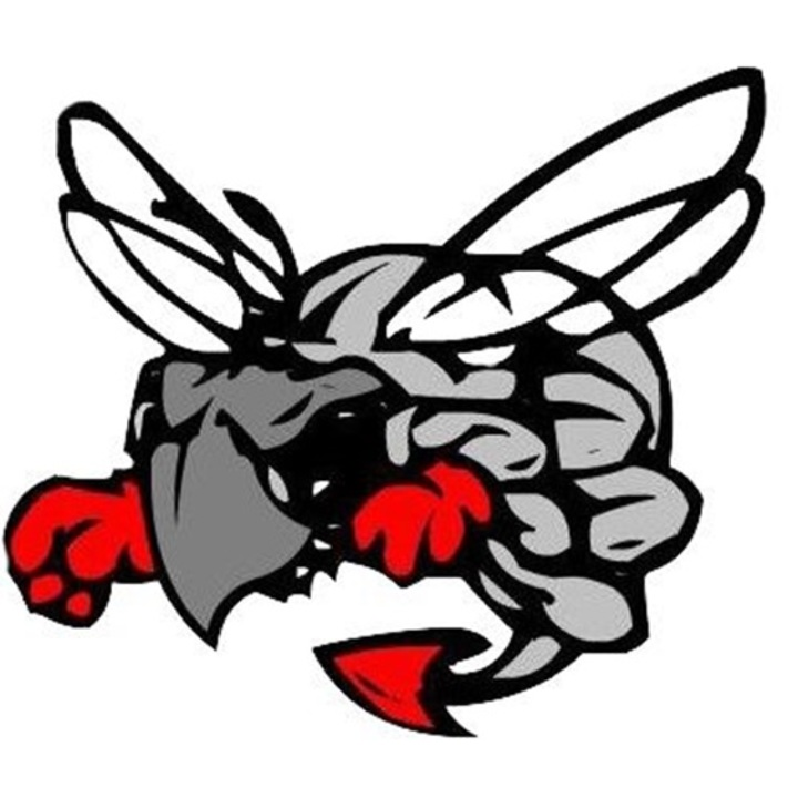 Hilldale High School mascot