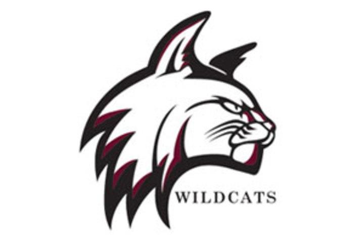 Bay Path College mascot