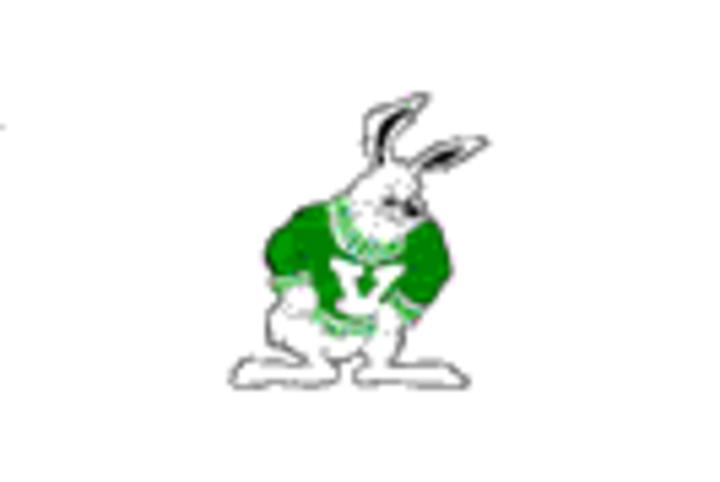 Victor Valley High School mascot