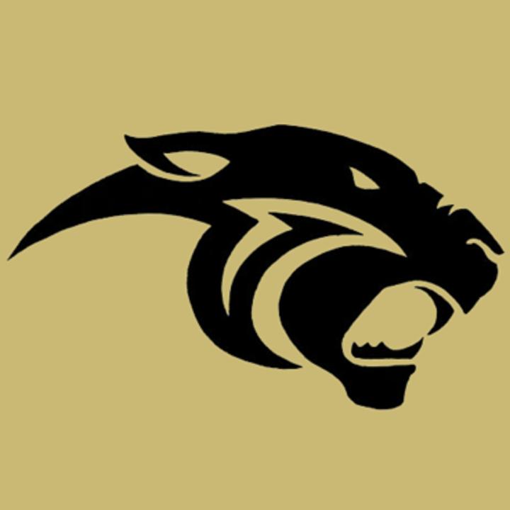 Danbury High School mascot