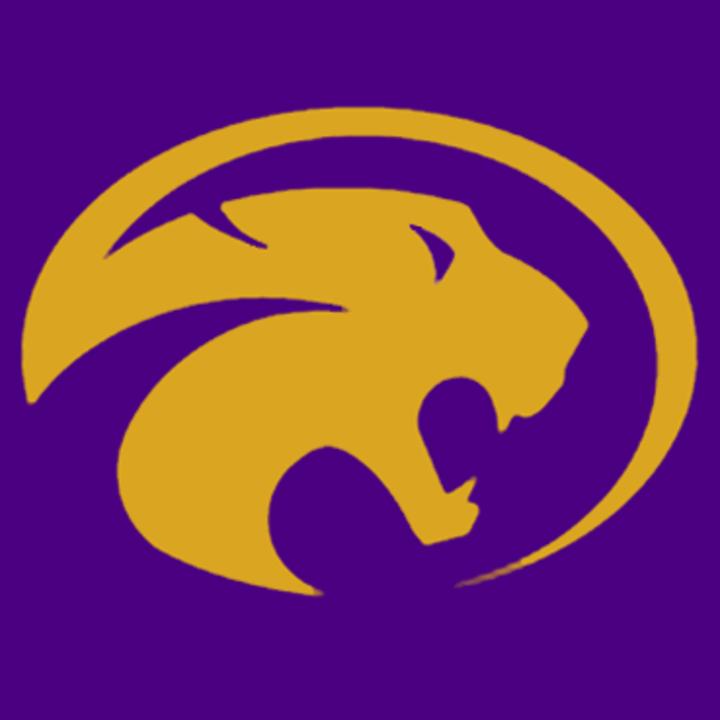 Liberty Hill High School mascot