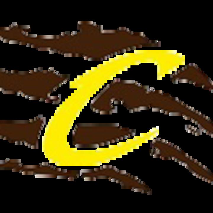 Cibola High School mascot