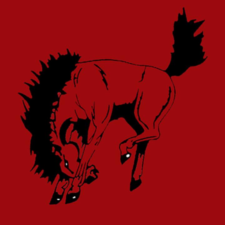 Sonora High School mascot