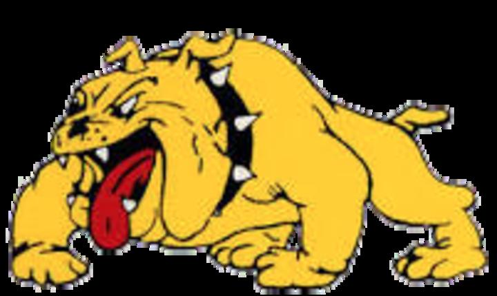 Batavia High School mascot