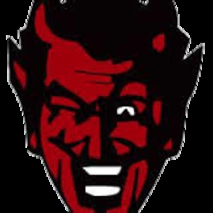 Dongola High School mascot