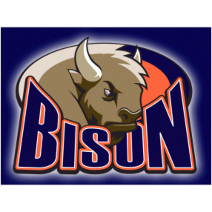 Buffalo Grove High School mascot