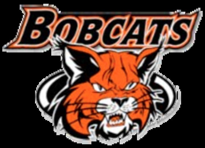Beecher High School mascot