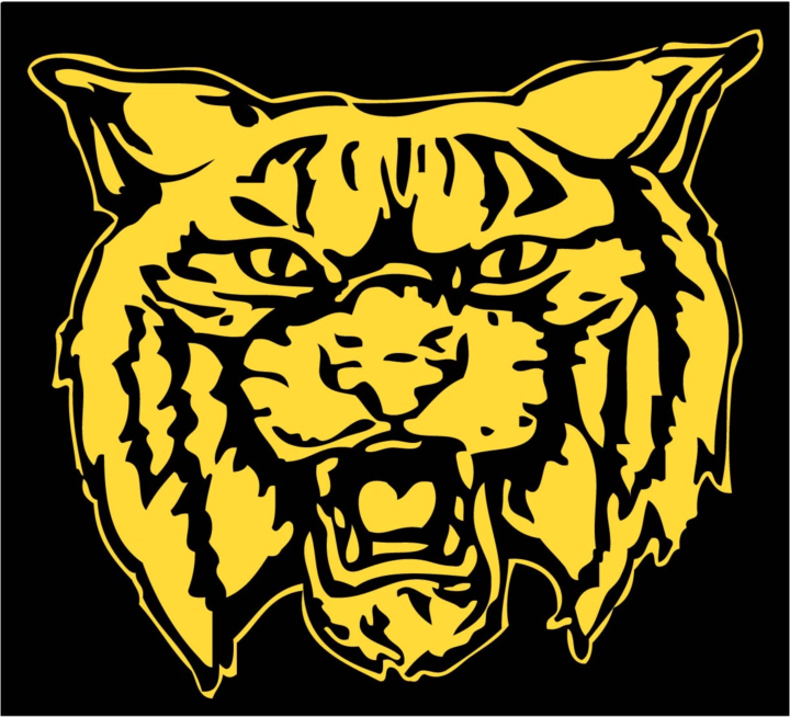 Donovan High School mascot