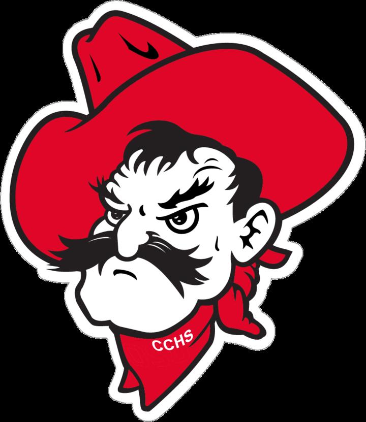 Cooper City High School mascot