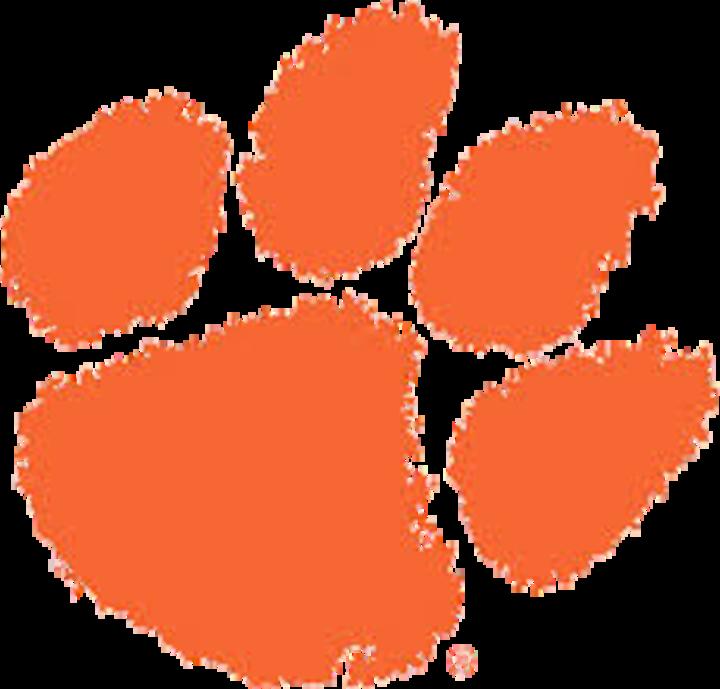 Trenton High School mascot