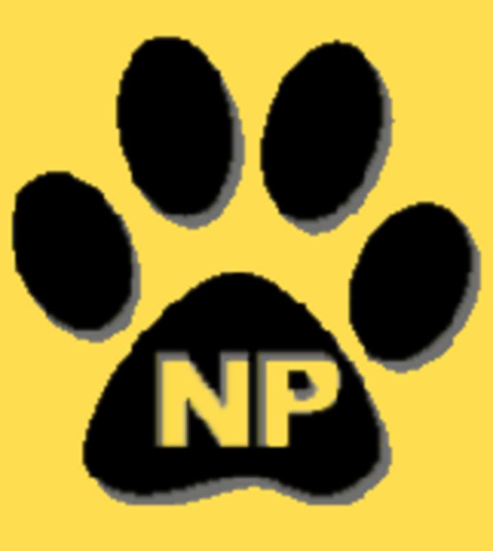Newbury Park High School mascot