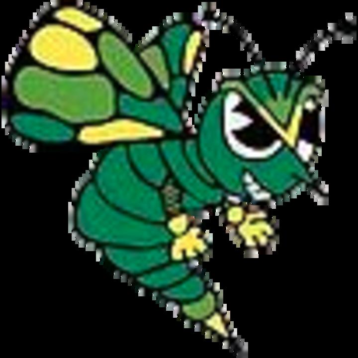 Brown County High School mascot