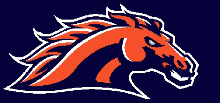 Cerro Gordo High School mascot