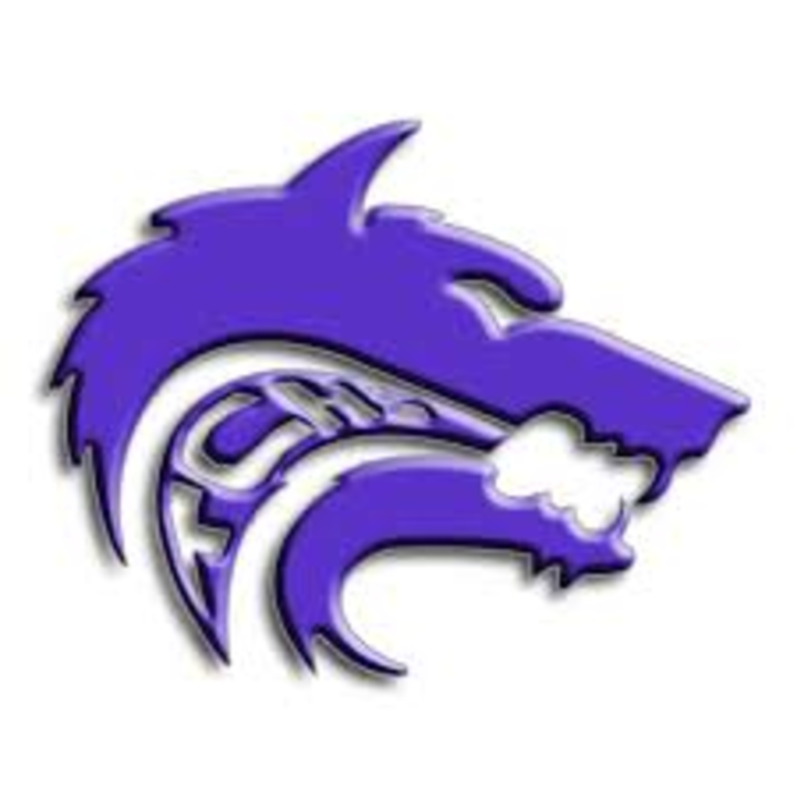 Timber Creek High School mascot