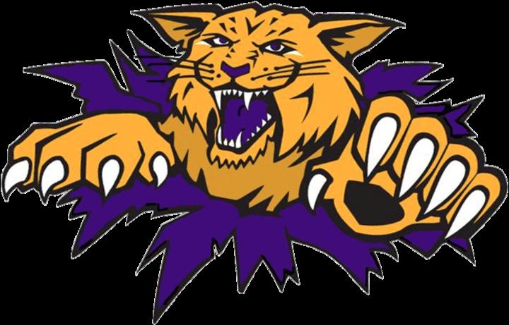 Carrier Mills-Stonefort High School mascot