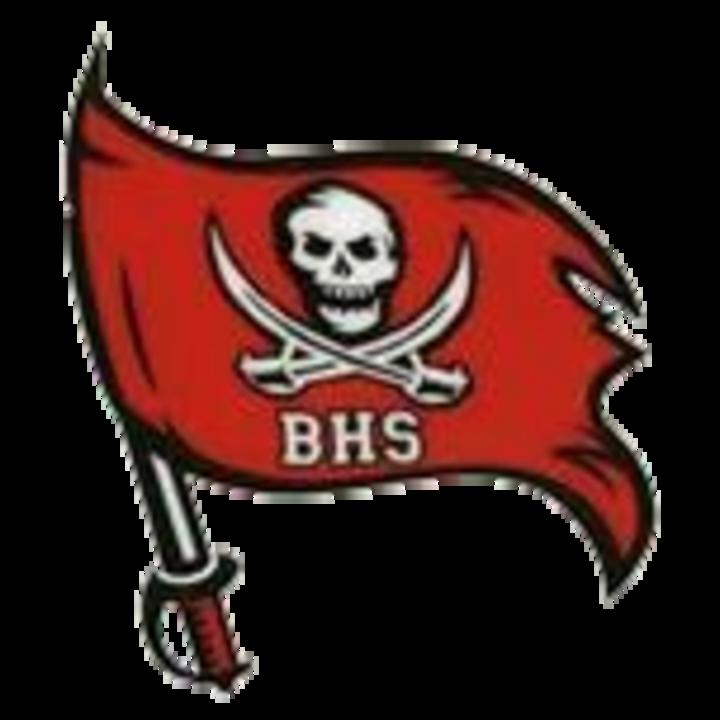 Bolingbrook High School mascot
