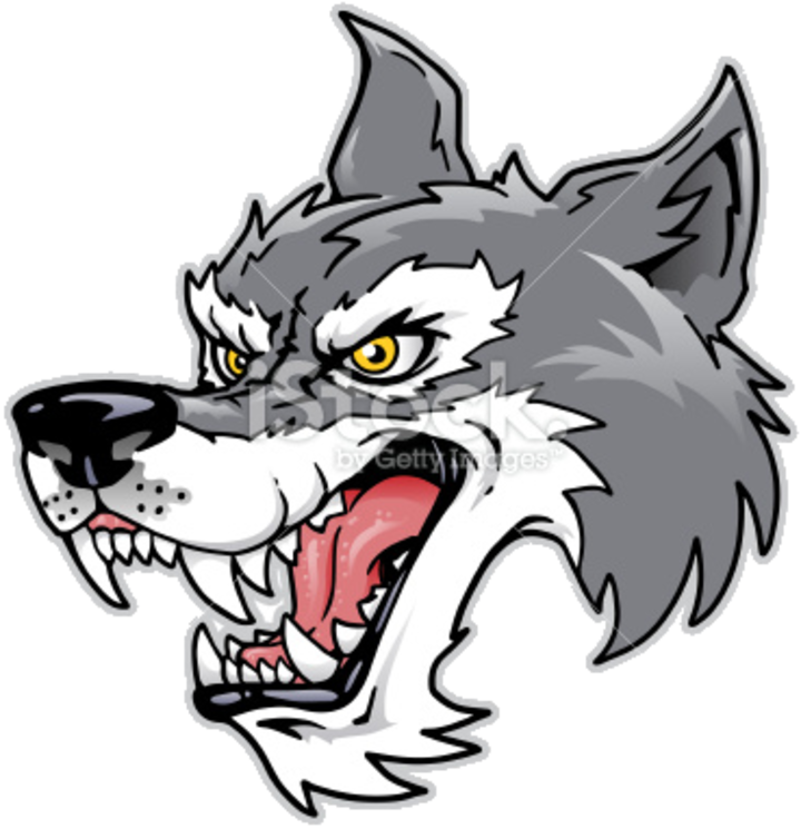 Clay City High School mascot
