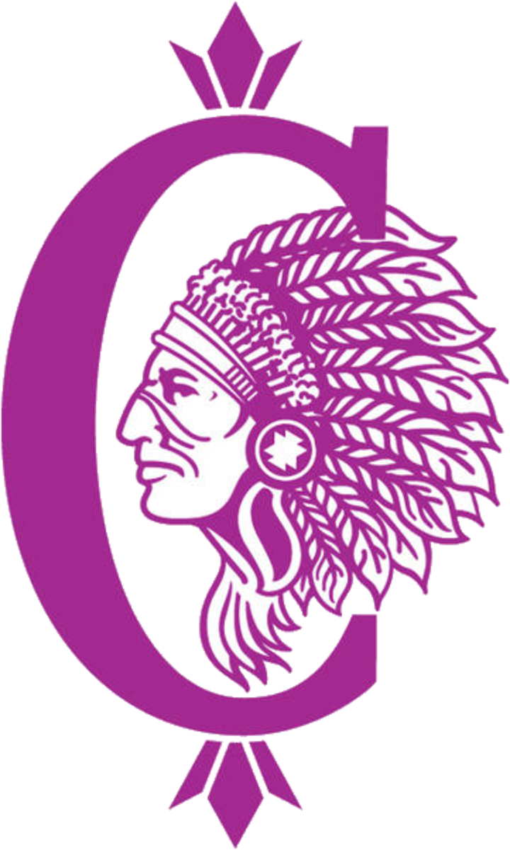Collinsville High School mascot