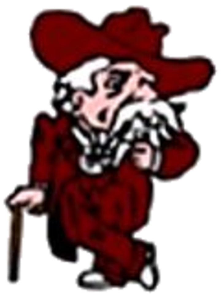 Henderson County High School mascot