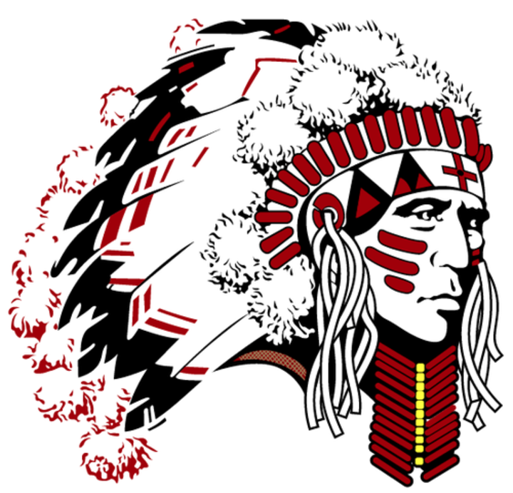 Danville Community High School mascot