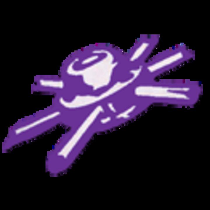 Rochelle High School mascot
