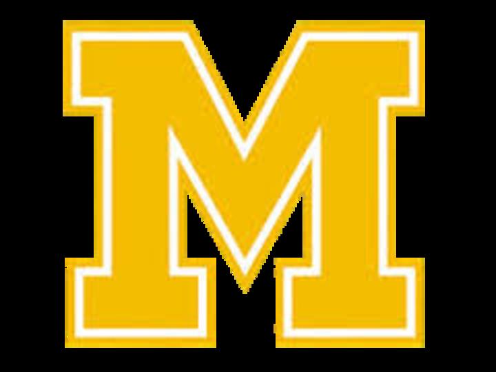 Milan High School mascot