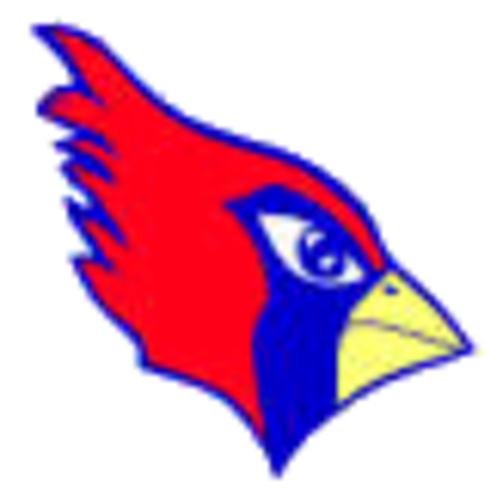 Pleasant Plains High School mascot