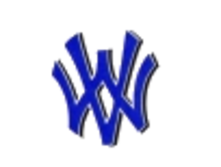 Walton-Verona High School mascot