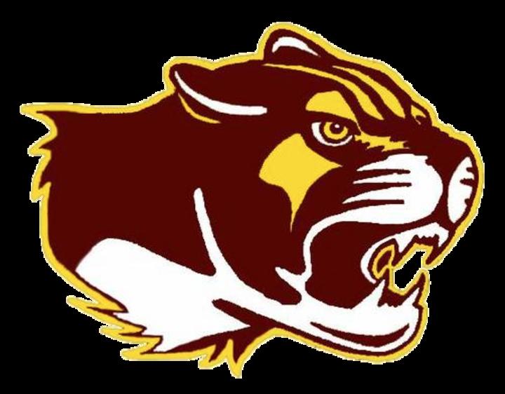 Bloomington North High School mascot