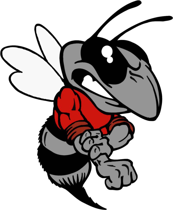 Hancock County High School mascot