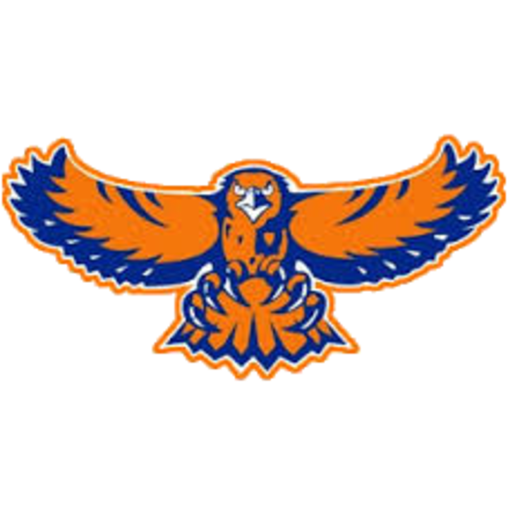 Hoffman Estates High School mascot