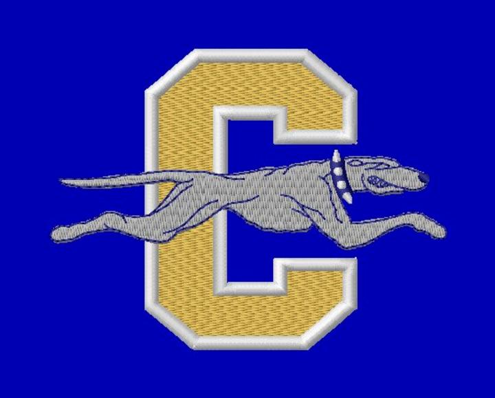 Carmel High School mascot