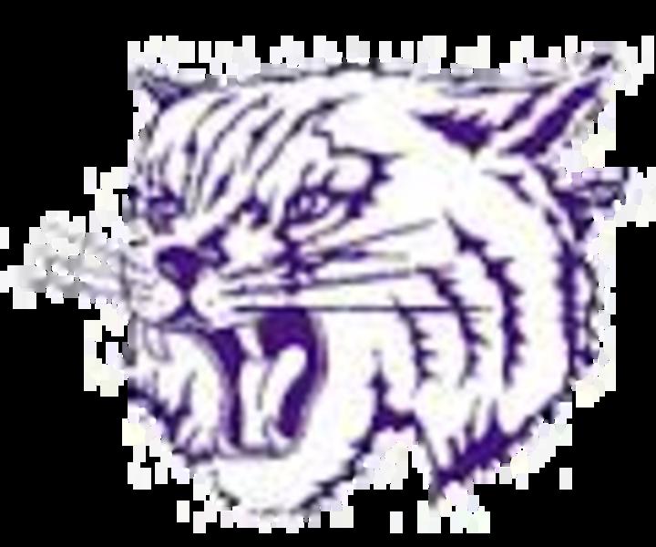 Mt Olive High School mascot