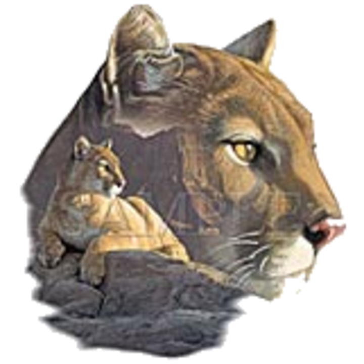 South Central High School mascot