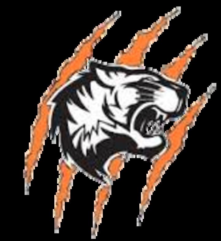 Warsaw High School mascot