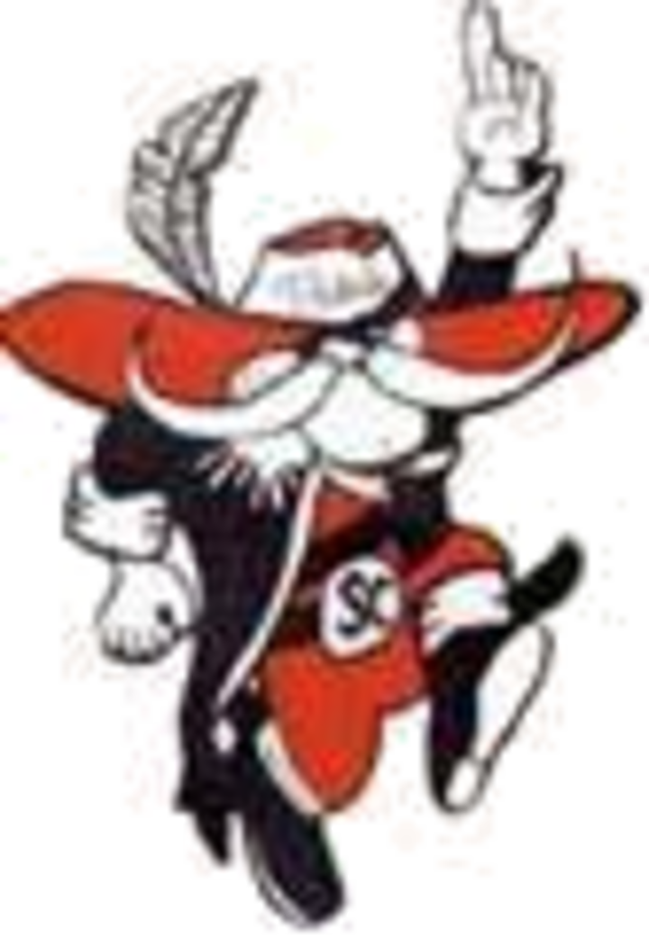 Stark County High School mascot