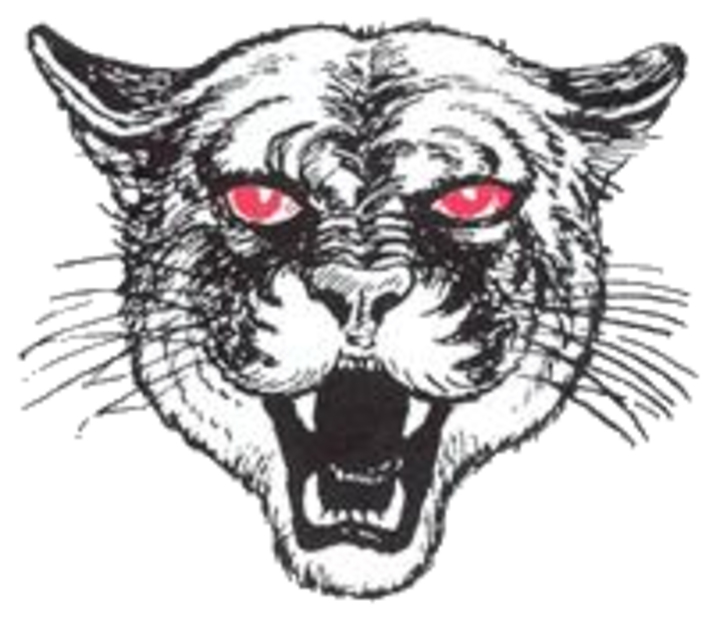 Kankakee Valley High School mascot