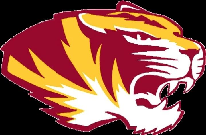 Alexandria-Monroe High School mascot
