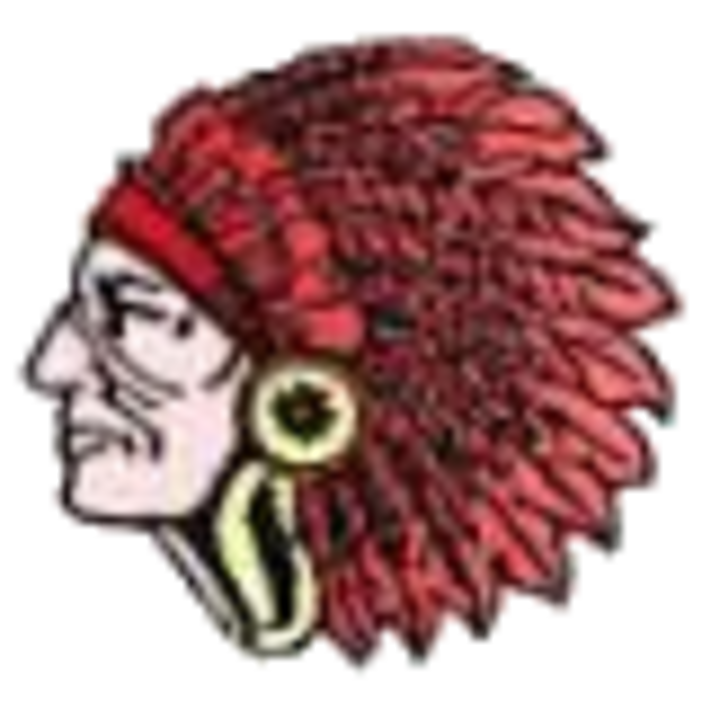 Nokomis High School mascot