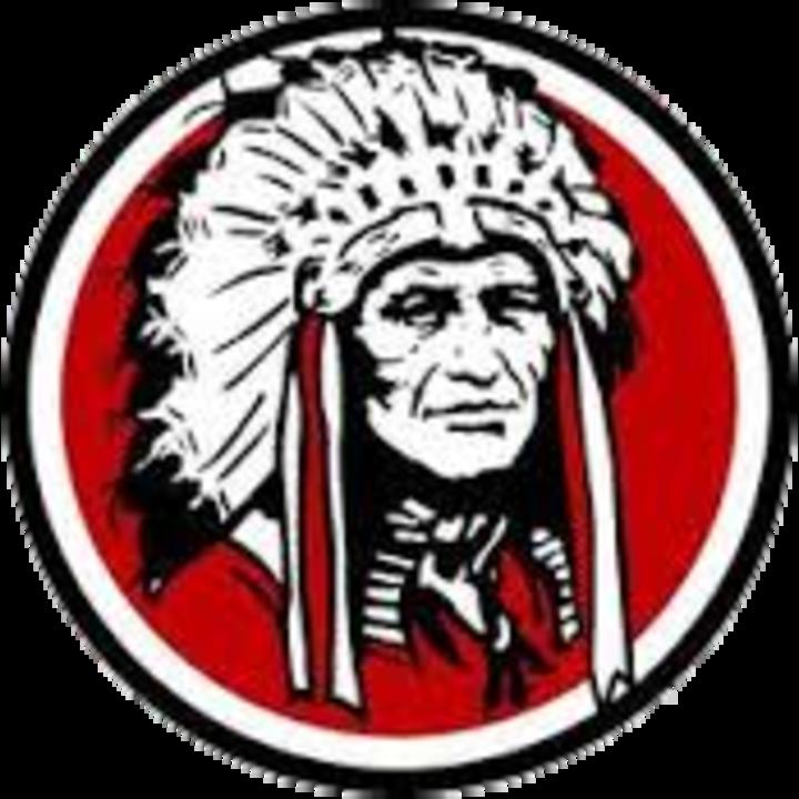 Johnston City High School mascot