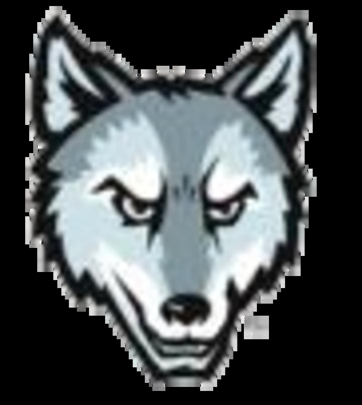 Niles West High School mascot