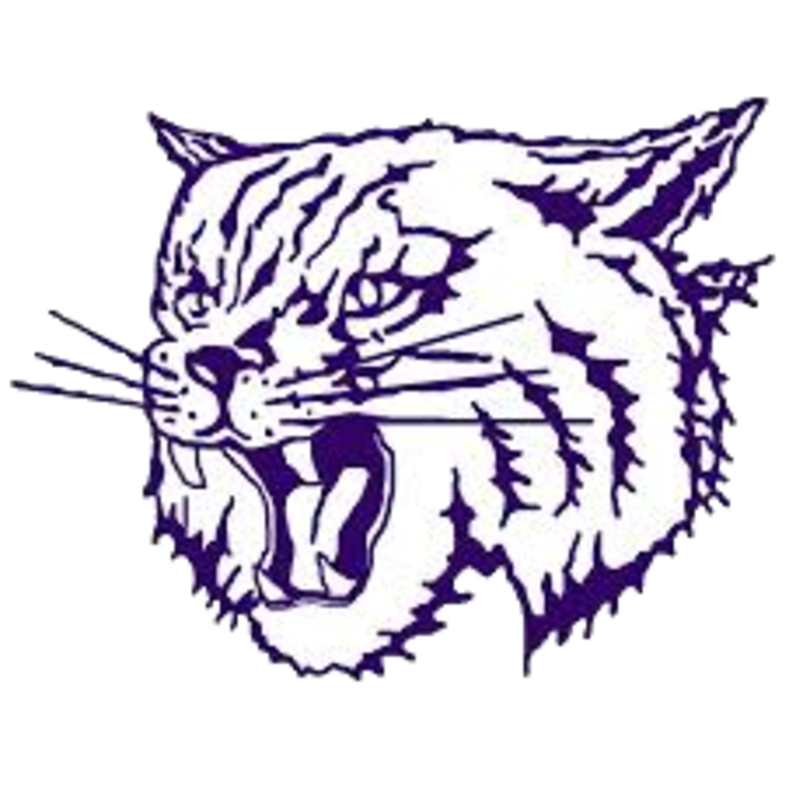Thornton Township High School mascot